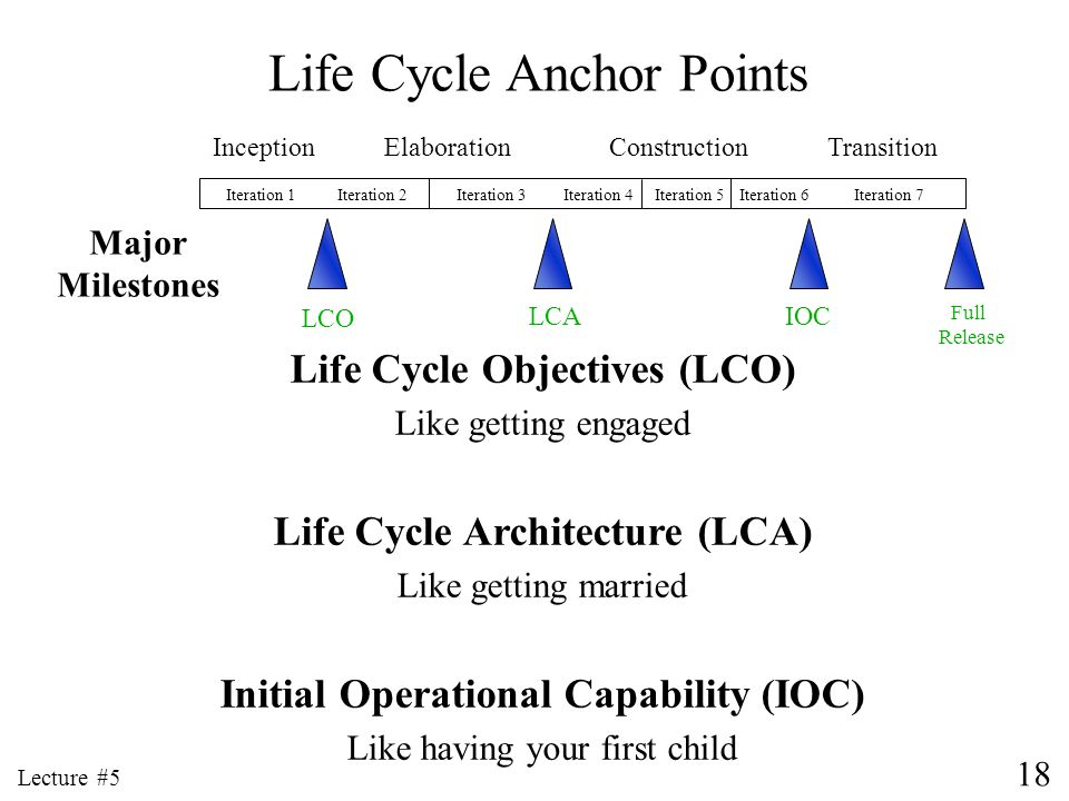 Life Cycle Anchor Points