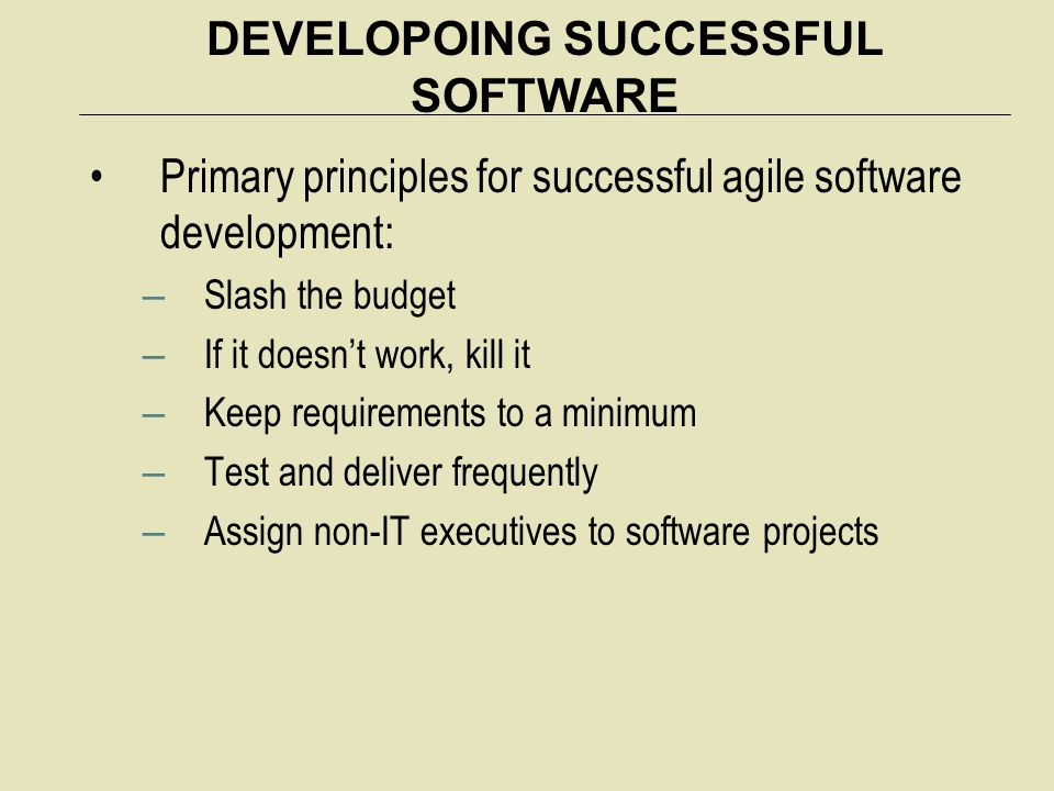 DEVELOPOING SUCCESSFUL SOFTWARE