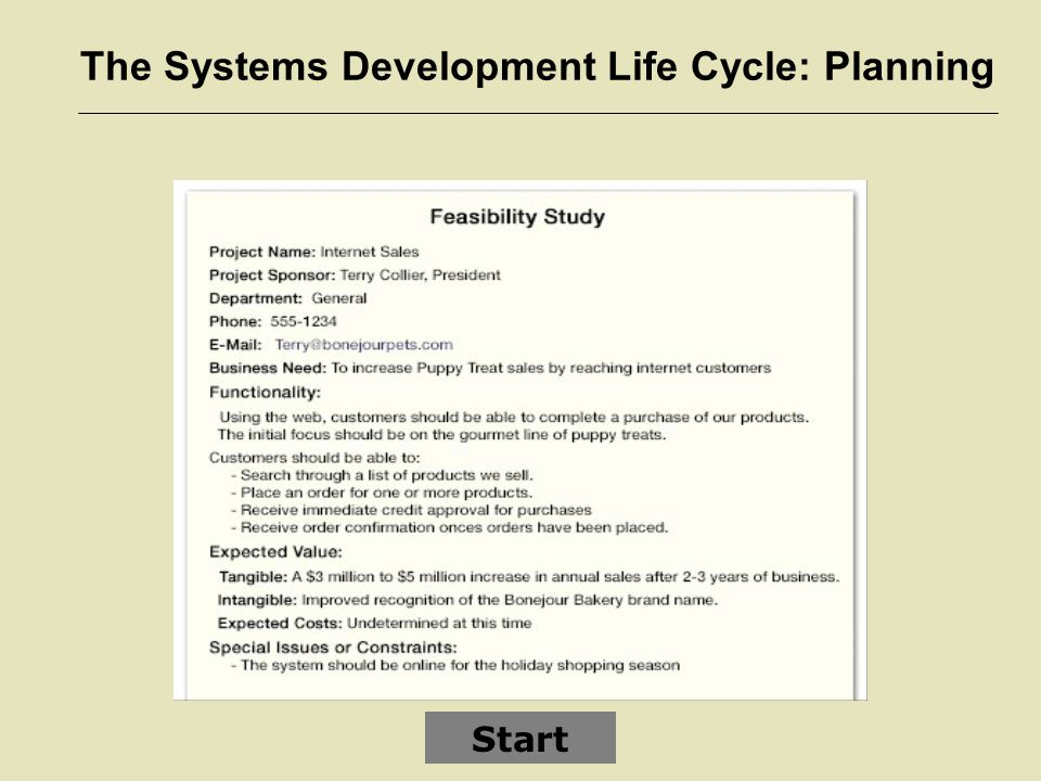 The Systems Development Life Cycle: Planning