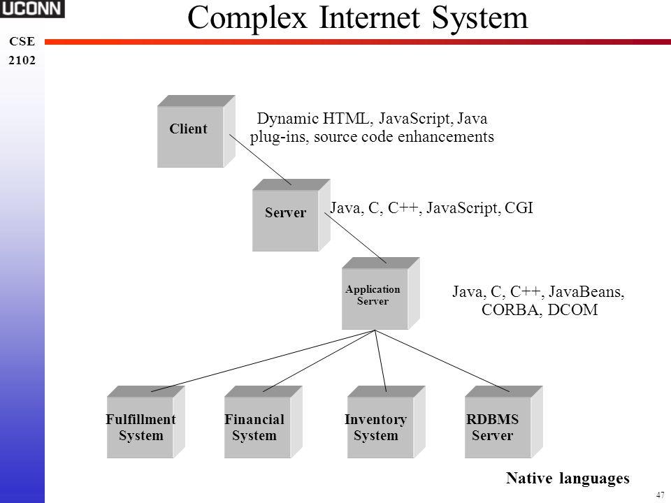 Complex Internet System