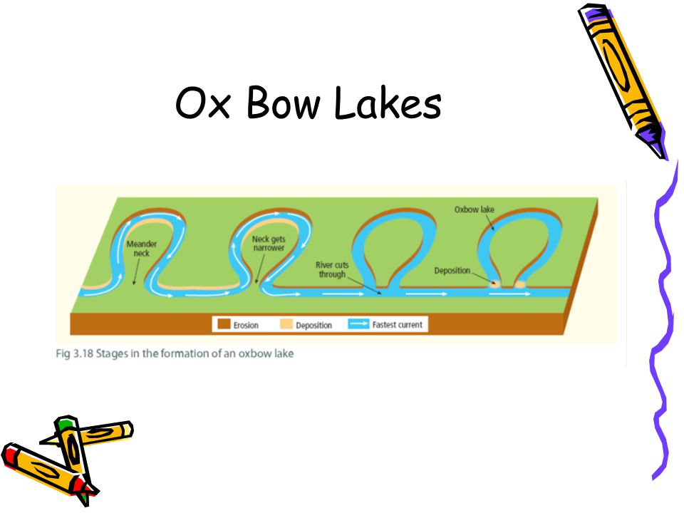 Ox Bow Lakes
