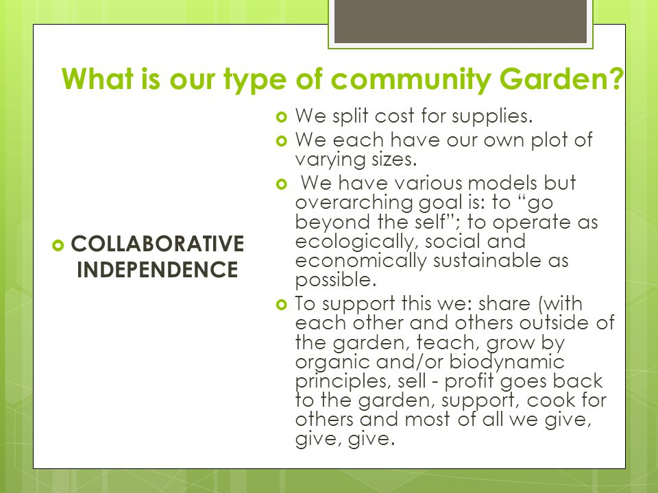 What is our type of community Garden