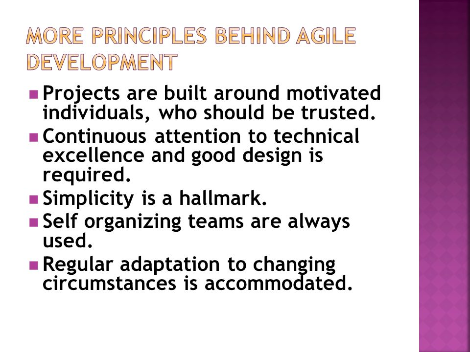 More Principles behind Agile Development