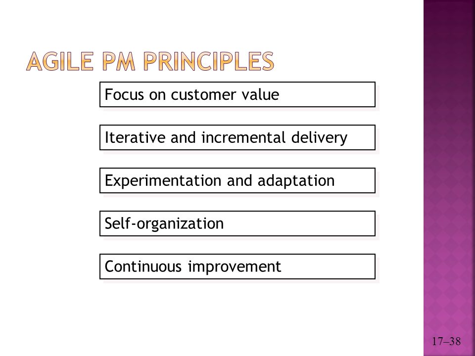 Agile PM Principles Focus on customer value