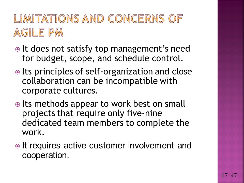 Limitations and Concerns of Agile PM