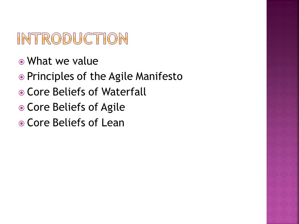 Introduction What we value Principles of the Agile Manifesto
