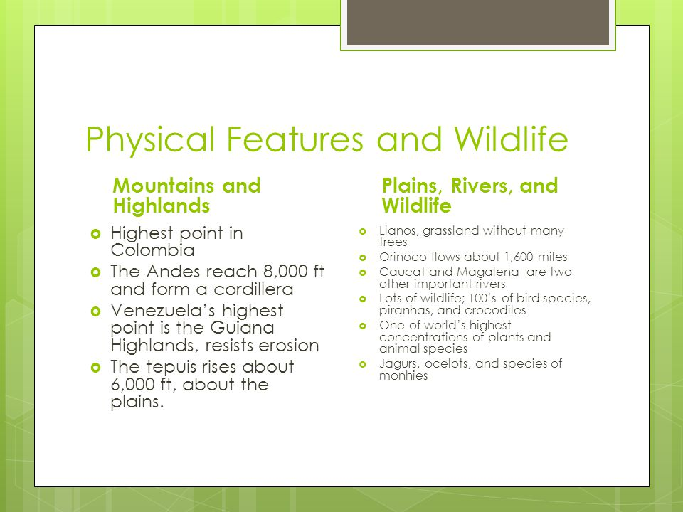 Physical Features and Wildlife