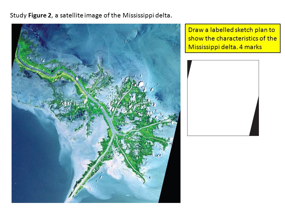 Study Figure 2, a satellite image of the Mississippi delta.