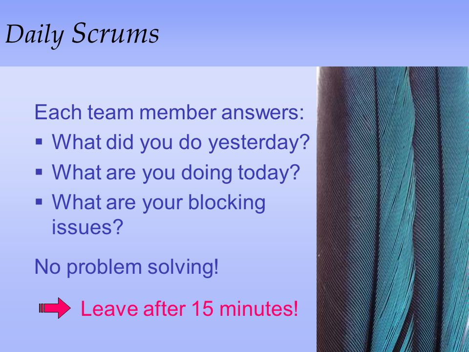 Daily Scrums Each team member answers: What did you do yesterday