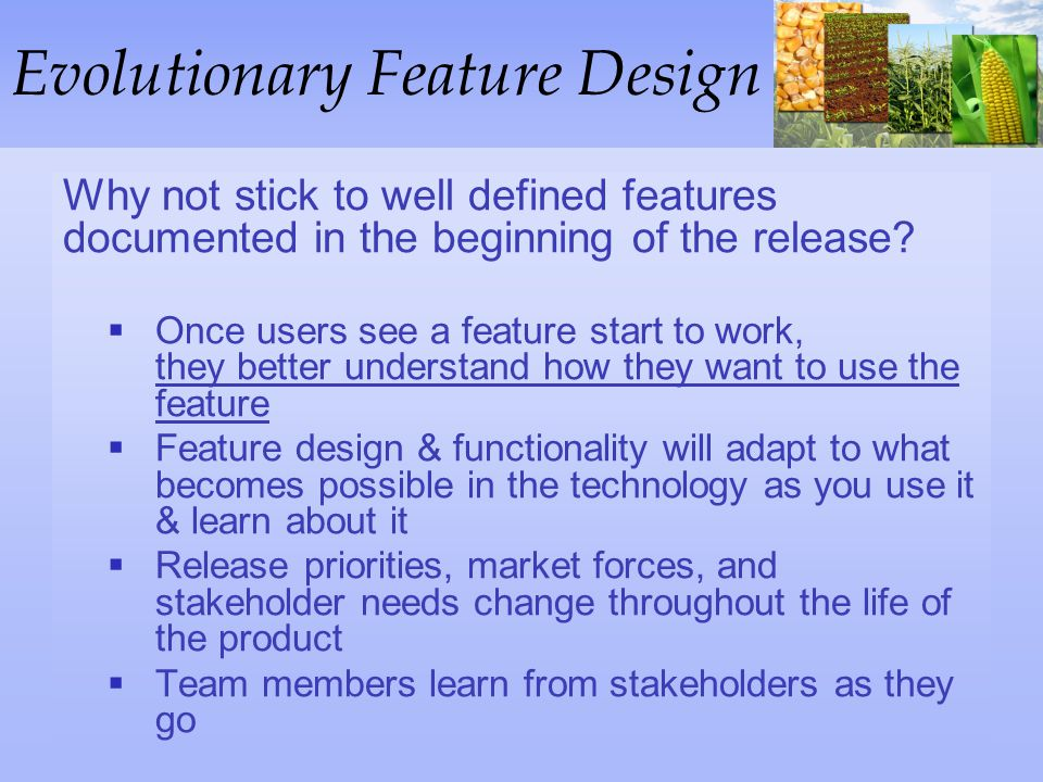 Evolutionary Feature Design