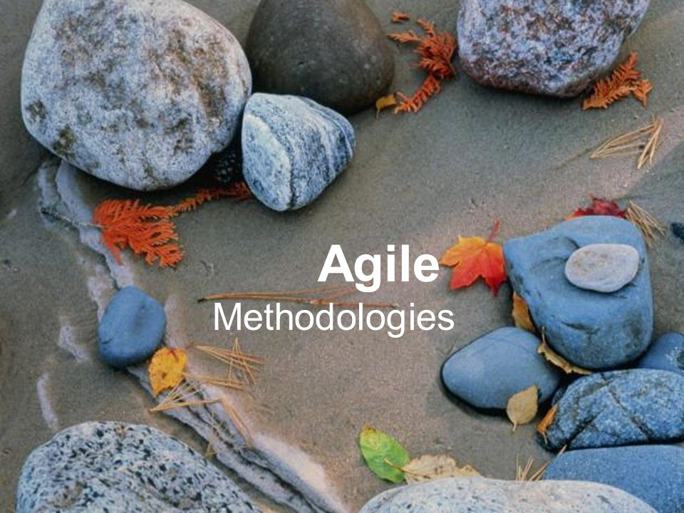 Project Management Remove Obstacles Agile Methodologies