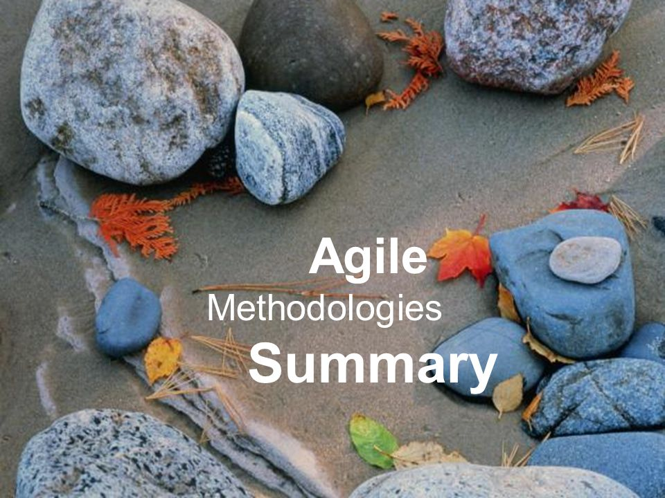 Project Management Remove Obstacles Agile Methodologies Summary