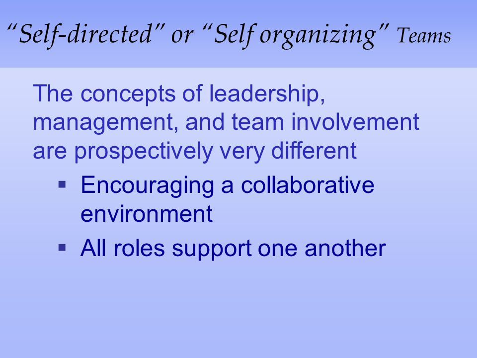 Self-directed or Self organizing Teams