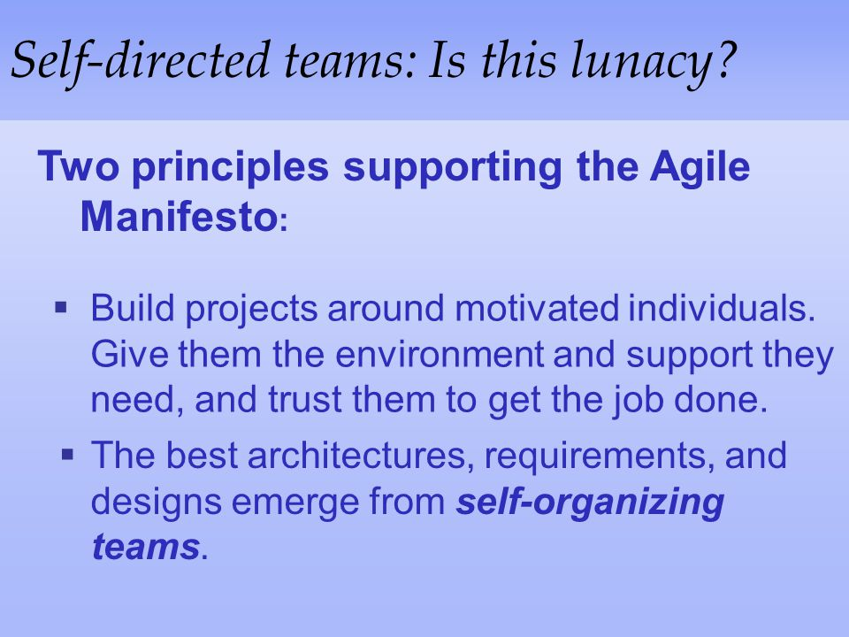 Self-directed teams: Is this lunacy