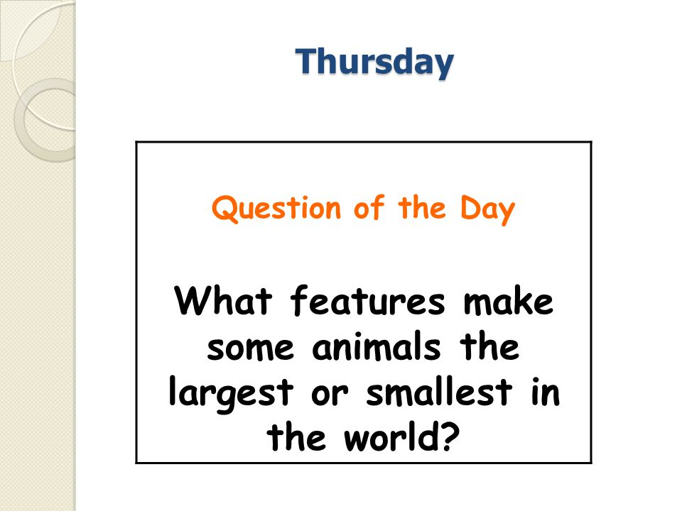 What features make some animals the largest or smallest in the world