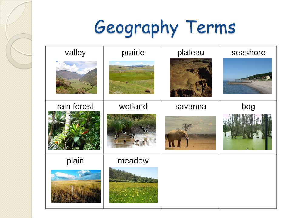 Geography Terms valley prairie plateau seashore rain forest wetland