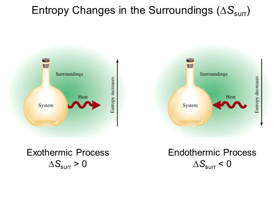 Entropy Changes in the Surroundings (DSsurr)