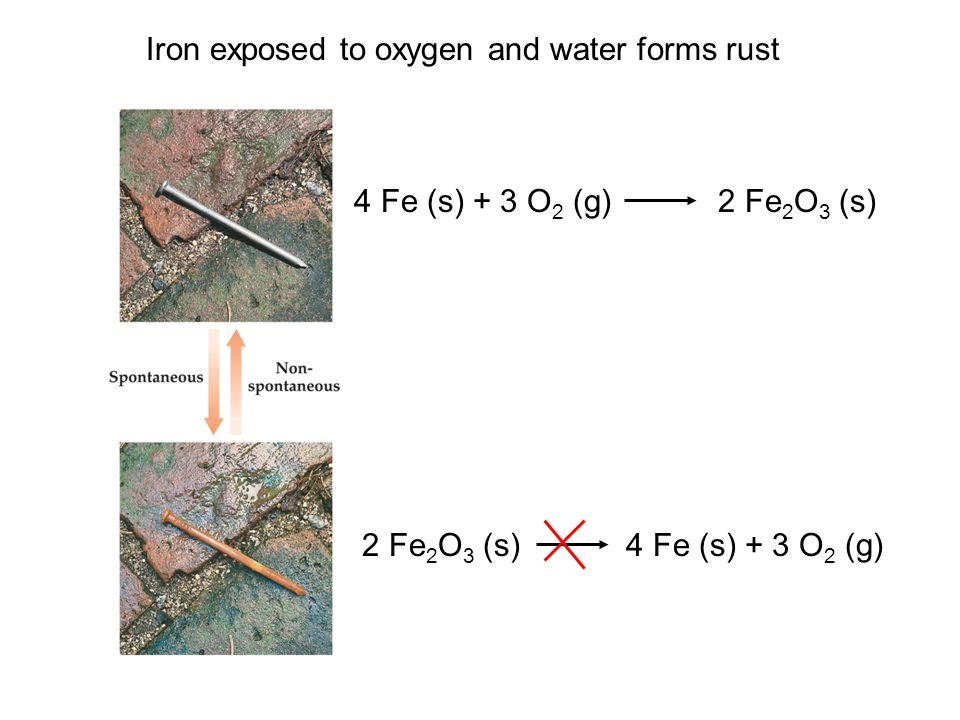 Iron exposed to oxygen and water forms rust