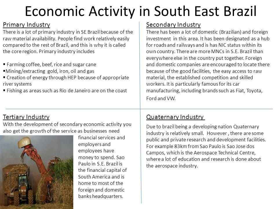 Economic Activity in South East Brazil