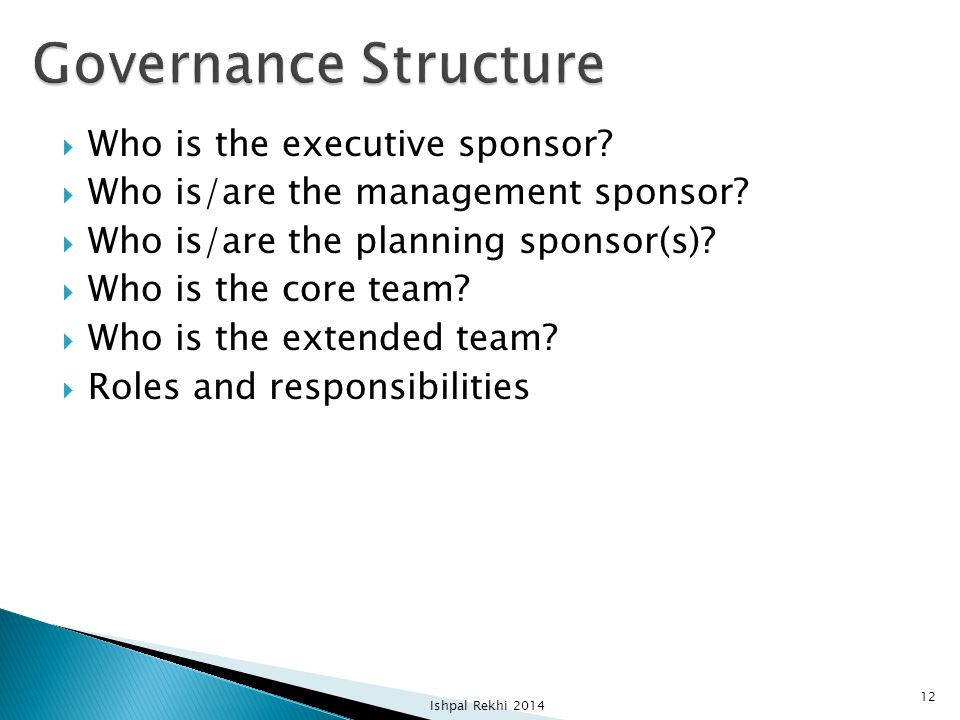 Governance Structure Who is the executive sponsor