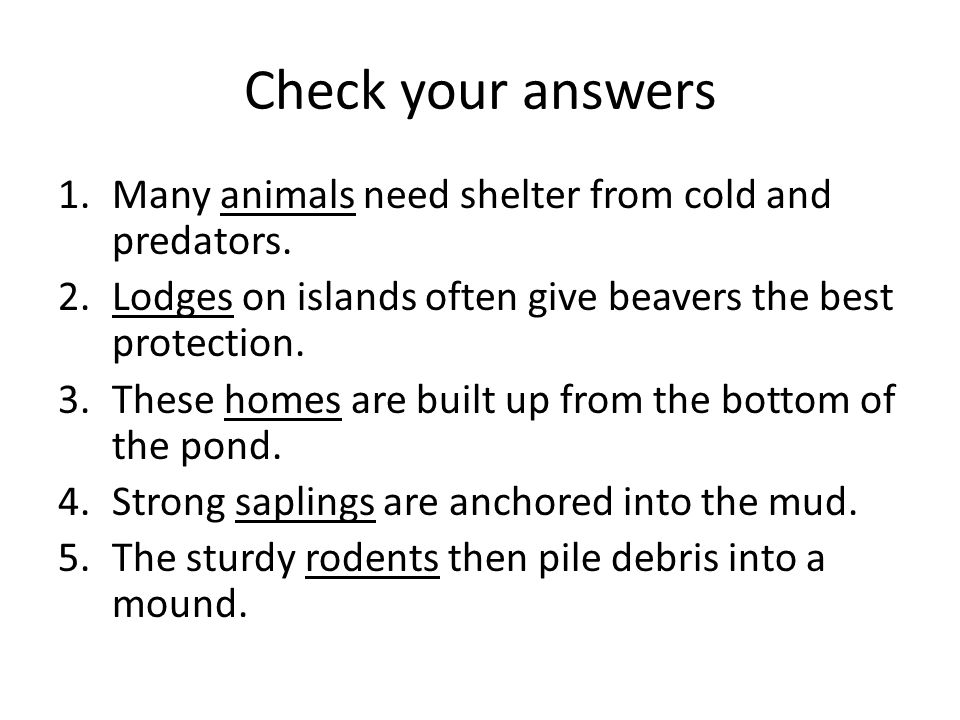 Check your answers Many animals need shelter from cold and predators.