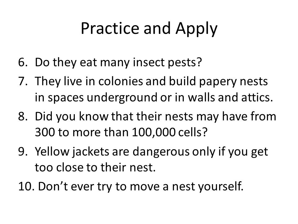 Practice and Apply Do they eat many insect pests