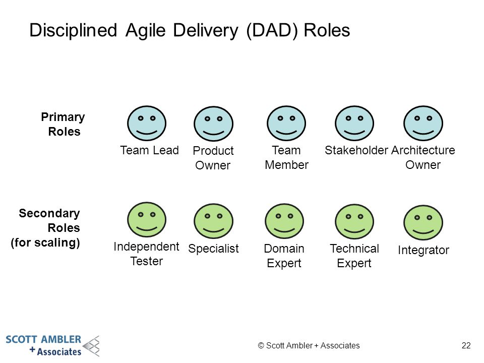 Disciplined Agile Delivery (DAD) Roles