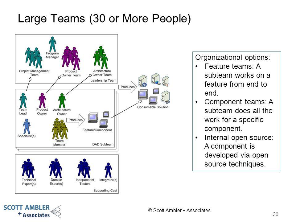 Large Teams (30 or More People)