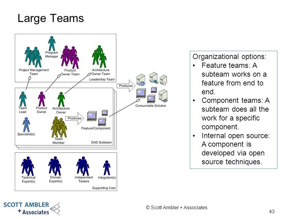 Large Teams Organizational options: