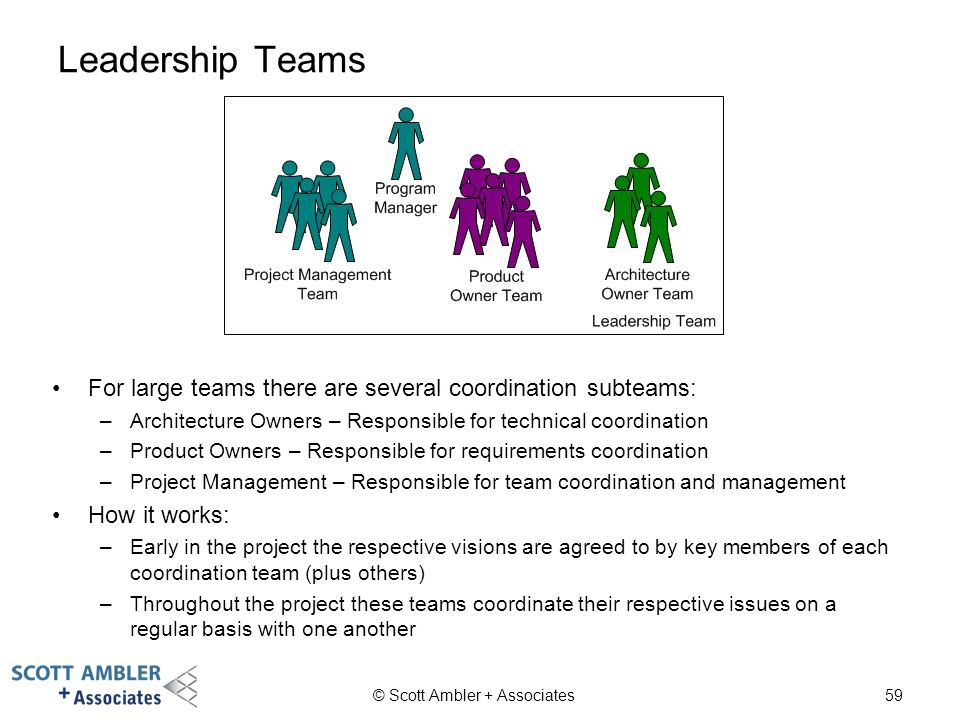 Leadership Teams For large teams there are several coordination subteams: Architecture Owners – Responsible for technical coordination.