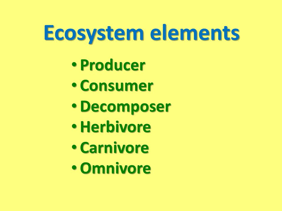 Ecosystem elements Producer Consumer Decomposer Herbivore Carnivore