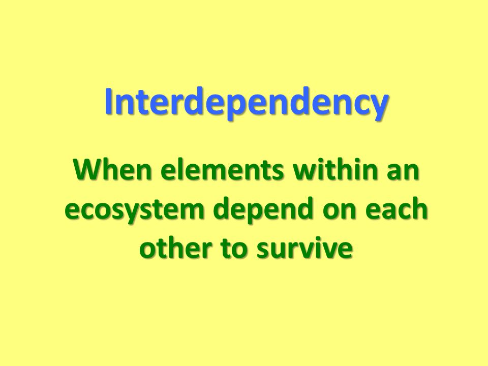 When elements within an ecosystem depend on each other to survive