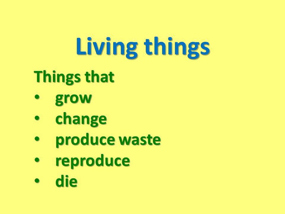 Living things Things that grow change produce waste reproduce die