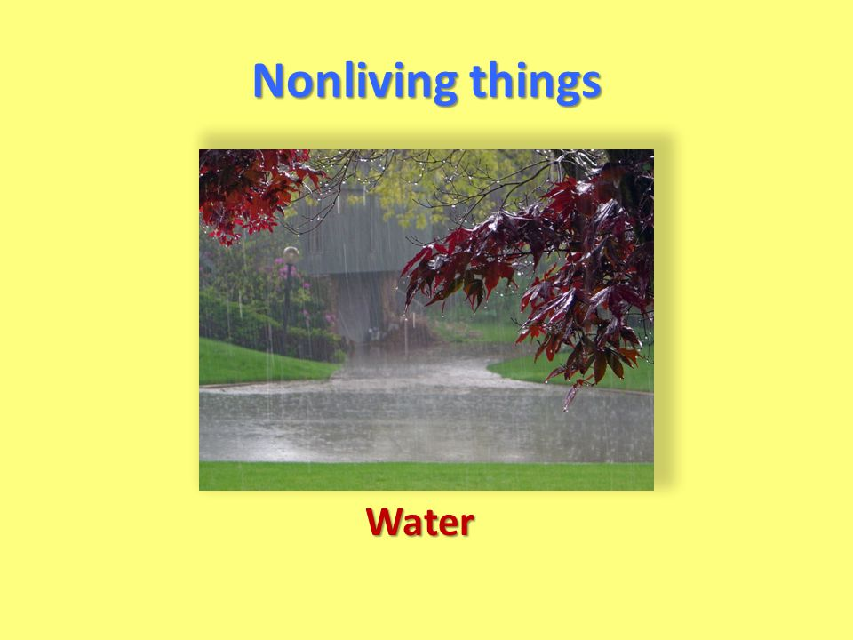 Nonliving things Water