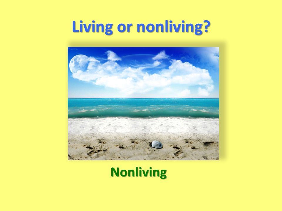 Living or nonliving Nonliving