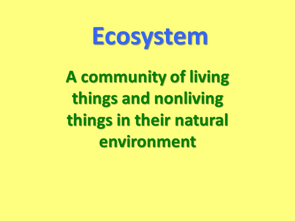 Ecosystem A community of living things and nonliving things in their natural environment