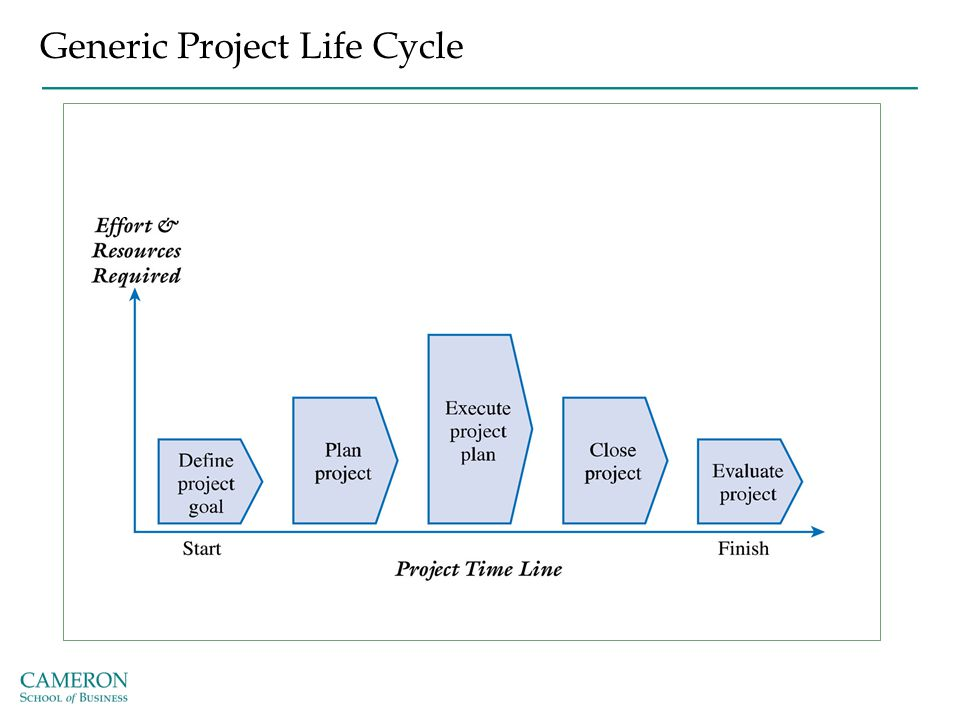 Generic Project Life Cycle