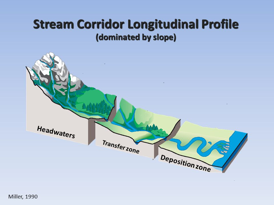 Stream Corridor Longitudinal Profile