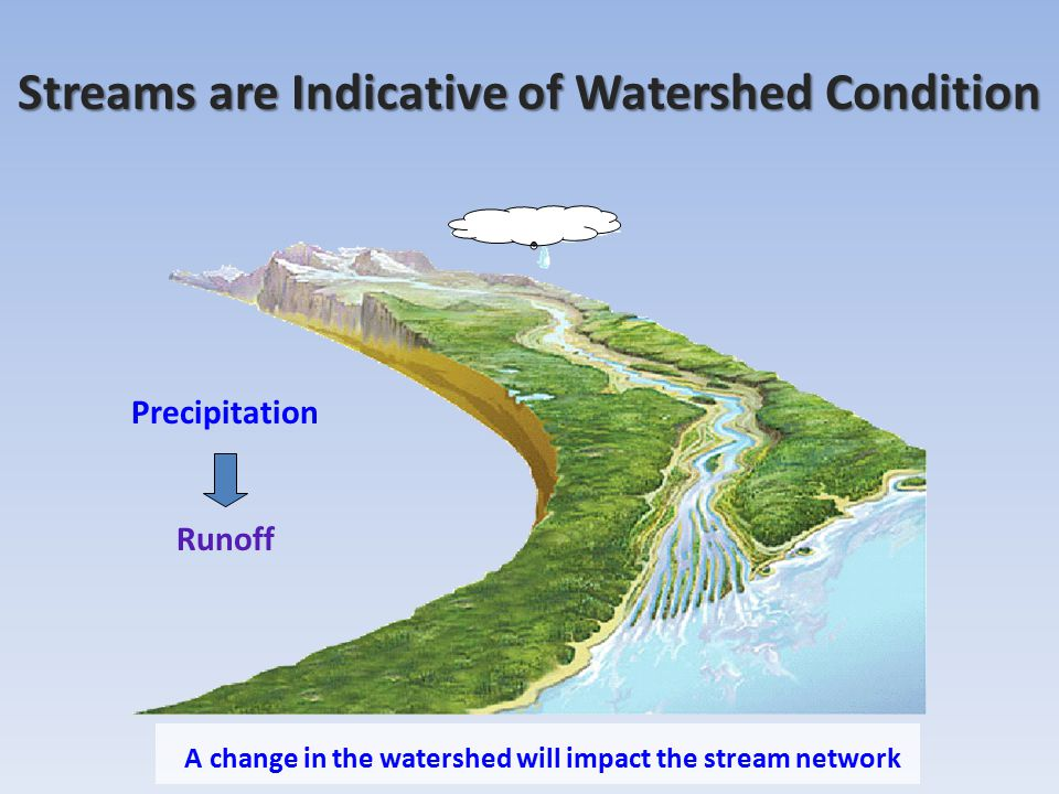 Streams are Indicative of Watershed Condition