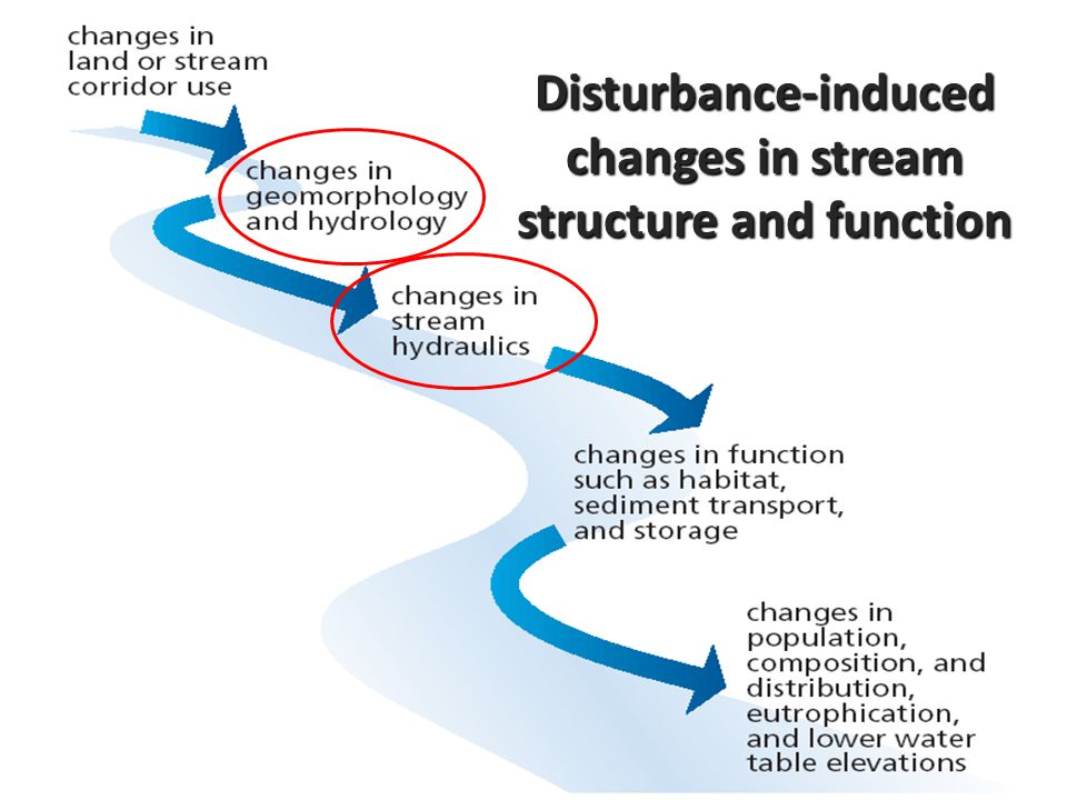 Disturbance-induced changes in stream structure and function