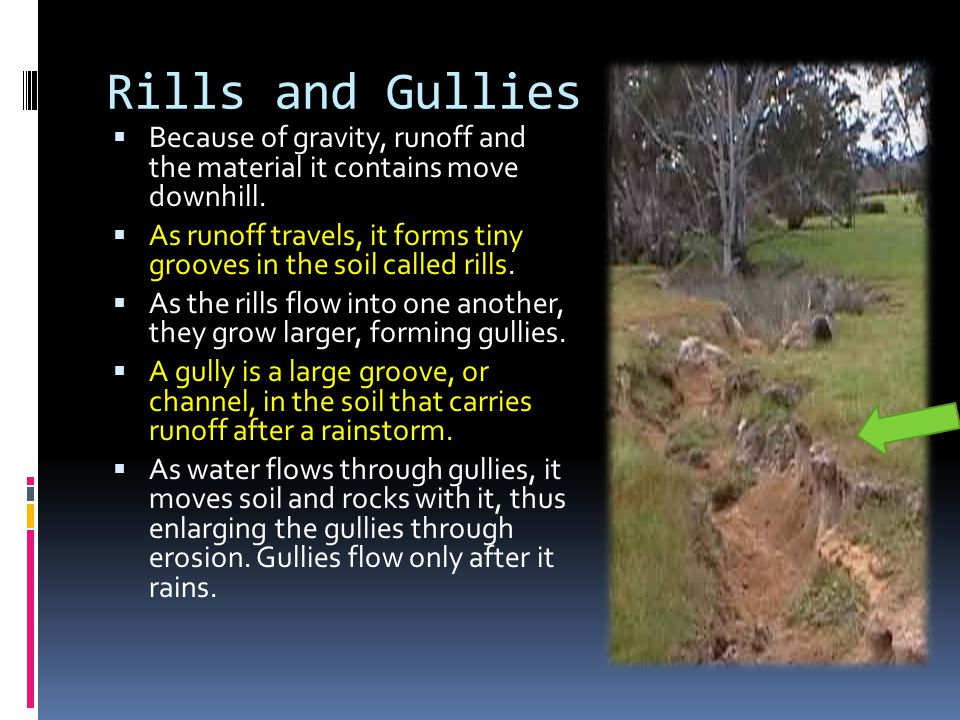 Rills and Gullies Because of gravity, runoff and the material it contains move downhill.