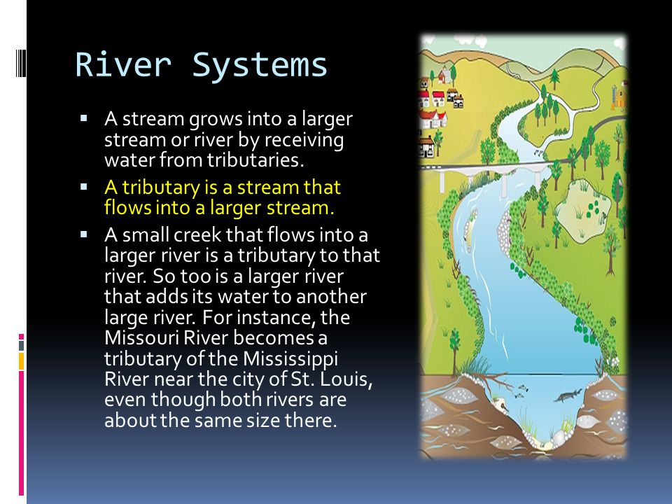 River Systems A stream grows into a larger stream or river by receiving water from tributaries.