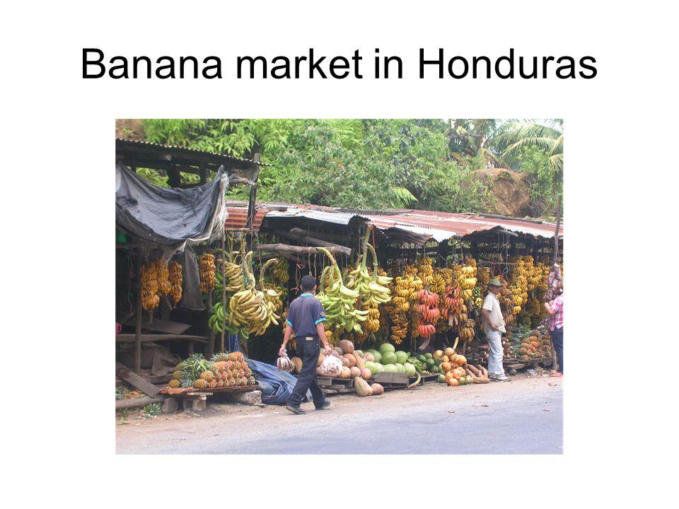 Banana market in Honduras