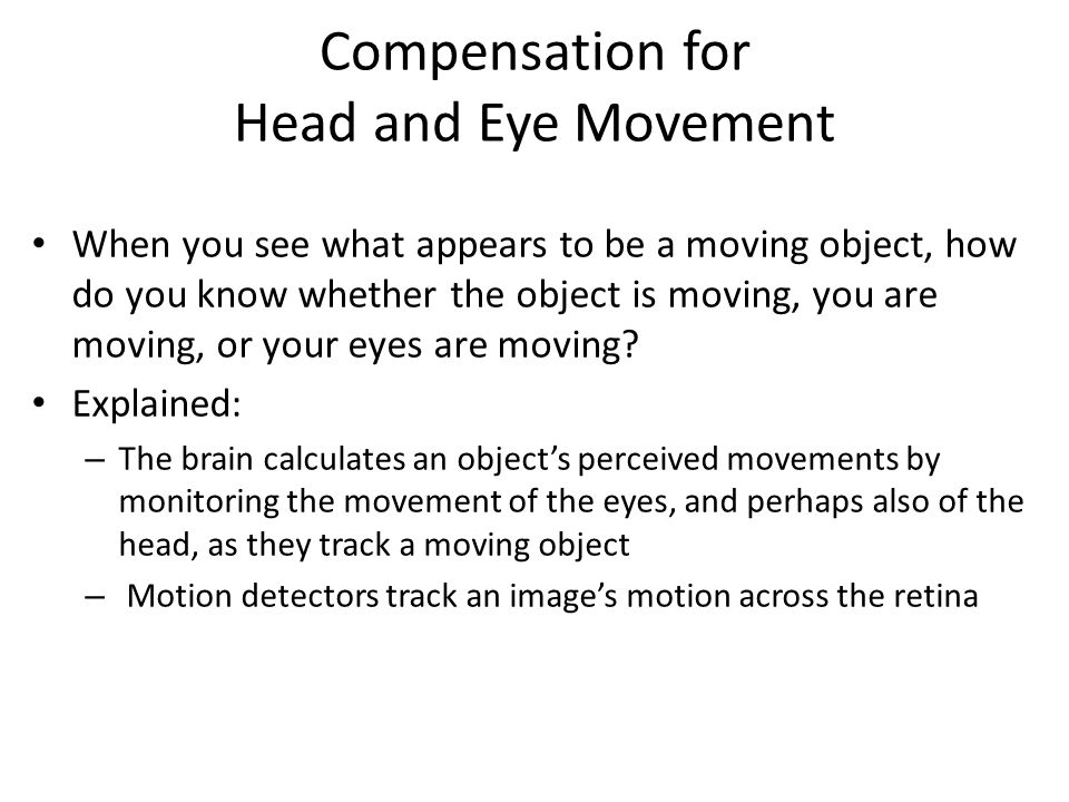 Compensation for Head and Eye Movement