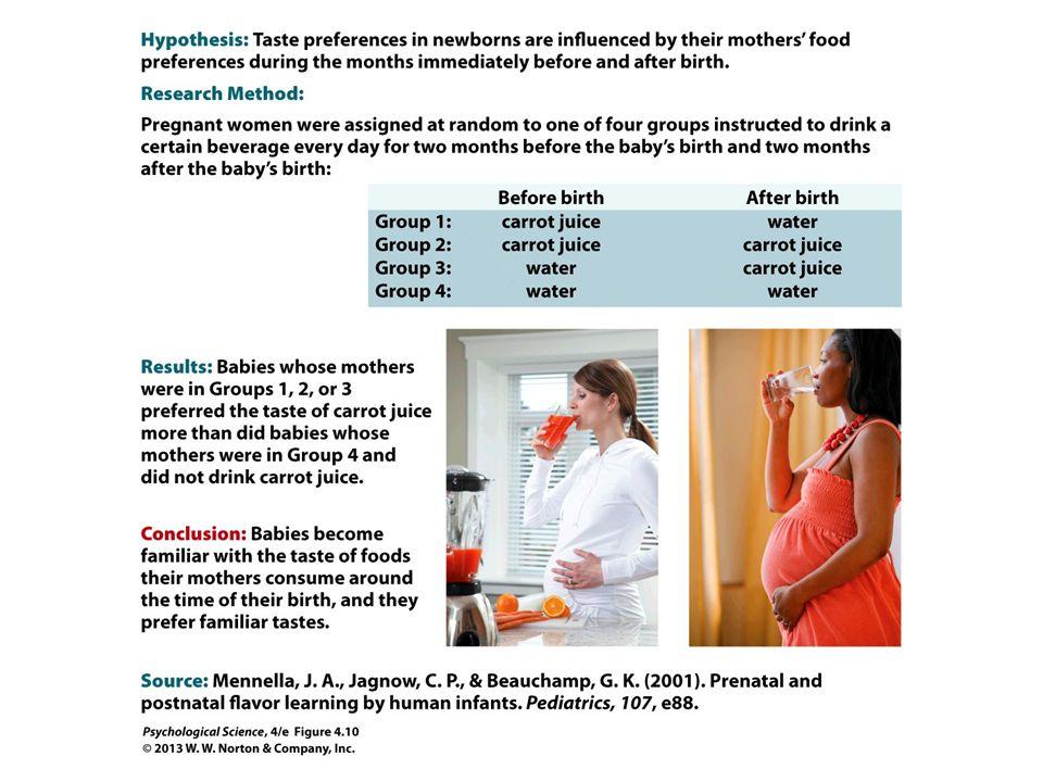 FIGURE 4.10 Scientific Method: Infant Taste Preferences Affected by Mother's Diet