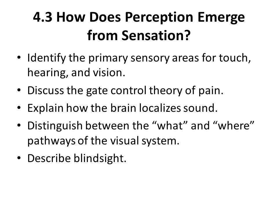 4.3 How Does Perception Emerge from Sensation