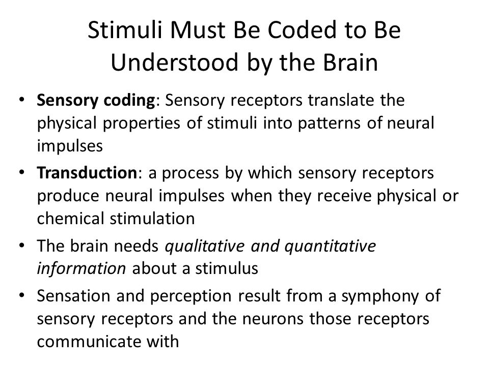 Stimuli Must Be Coded to Be Understood by the Brain