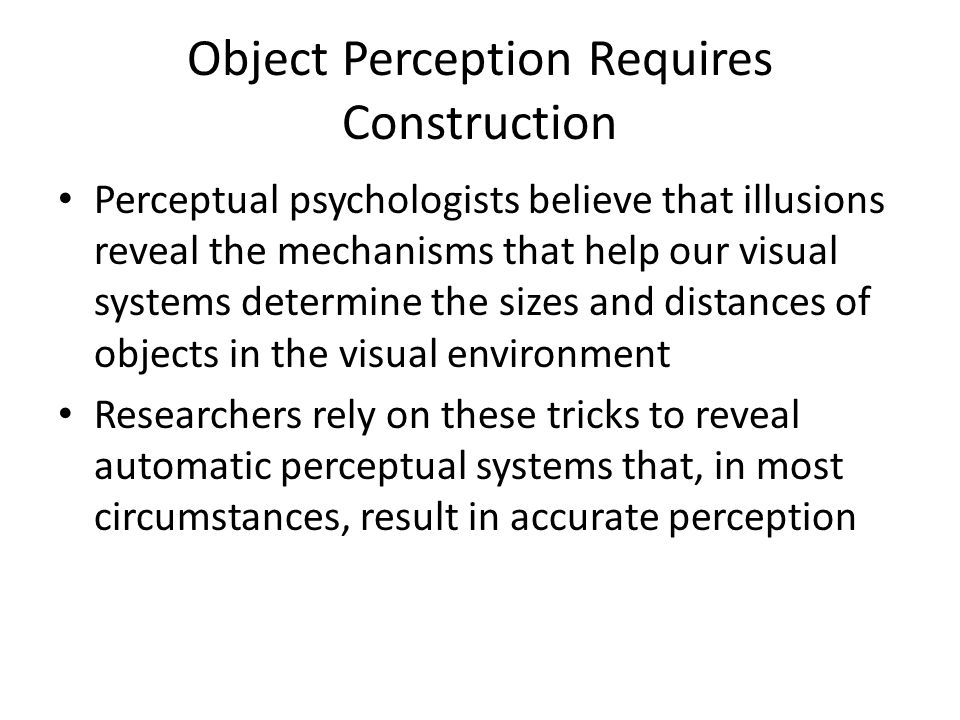 Object Perception Requires Construction