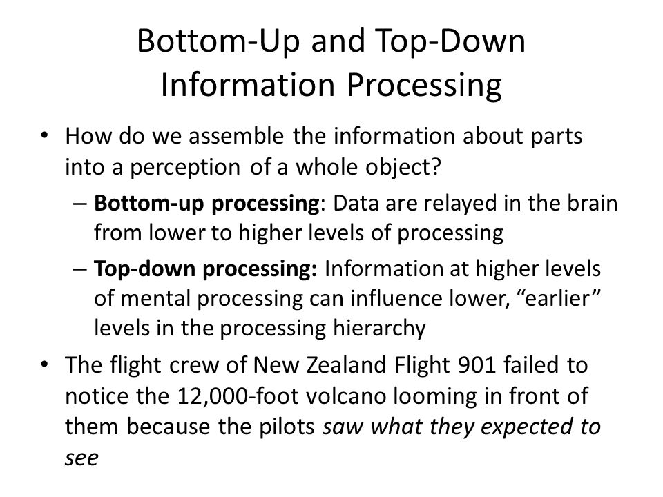 Bottom-Up and Top-Down Information Processing