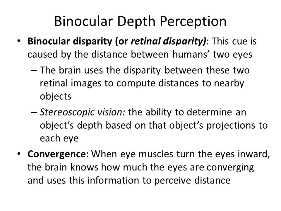 Binocular Depth Perception